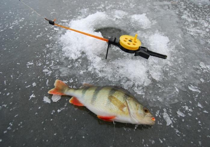 Новости: Особенности ледовой ловли на Нижней Волге, или Серебряный иней в «Золотом квадрате». Часть 2