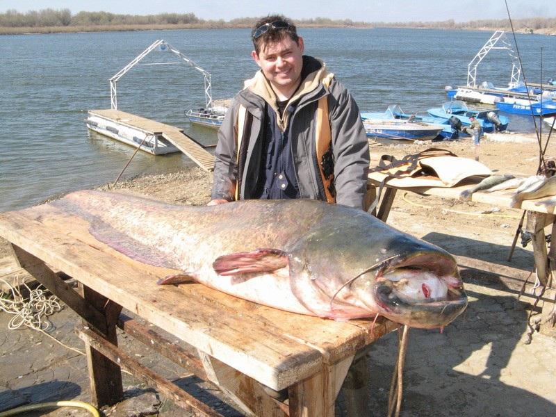 всероссийский рыболовный форум база успех